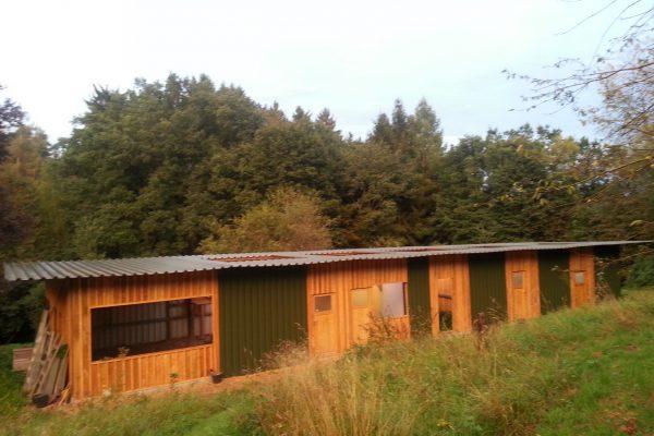 Neubau für die Auffang- und Pflegestation August 2016