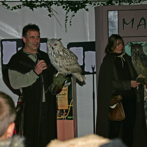 Harry Potter-Nacht in Gelnhausen
