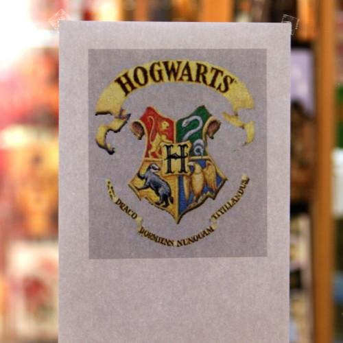 Harry Potter-Nacht in Gelnhausen