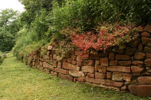 Trockenmauer in der Falknerei