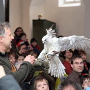 Vortragsreihe im Jagdschloss Kranichstein